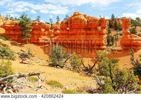 USA. The most popular trails in Red Canyon. Red-brown canyons and outliers are composed of soft sedimentary rocks. Scenic spots of America. Sunny day.