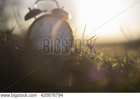 A Flower With A Blurred Alarmclock Onsunrise Morning With Light Flares