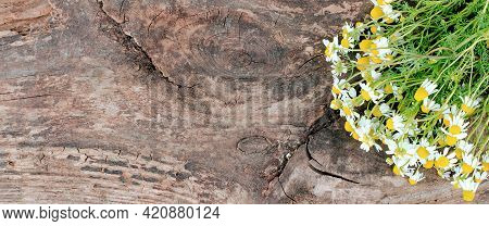 A Bouquet Of Daisies On A Wooden Background With A Place For Advertising Display Of Products, Banner