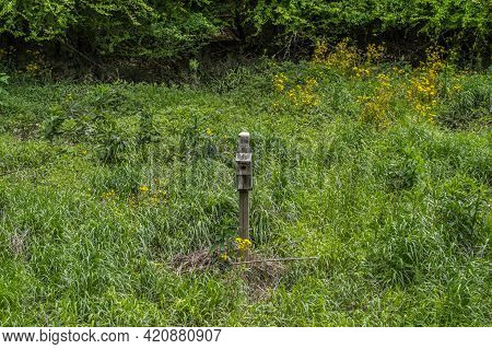 A Single Large Birdhouse Alone In The Middle Of The Grassy Field Along The Trail In The Park With Th