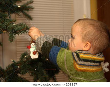 Little Boy Trimming