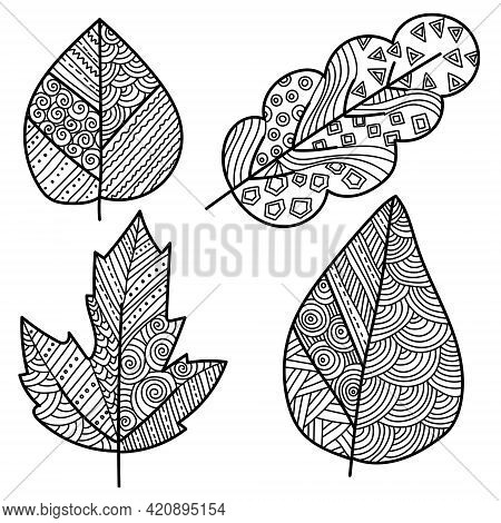 Set Of Zen Leaves With Ornate Patterns, Coloring Page With Plant Motifs Vector Illustration