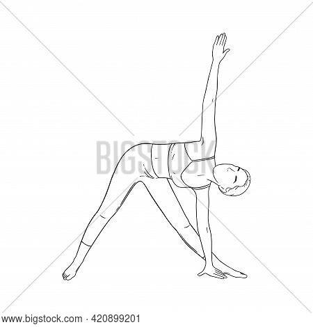 Woman In Triangle Yoga Pose. Trikonasana Pose In Hatha Yoga. Sketch Vector Illustration Isolated In