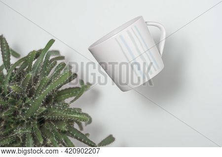 Cup And Cactus, Watering Imitation, Abstraction Close Up