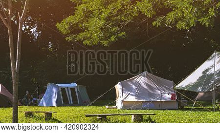 Sunlight On Surface Of Green Branches With Various Field Tents And Travelers Group Relaxing In The S