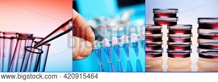 Collage of clinicians studying microbiology genetics in laboratory