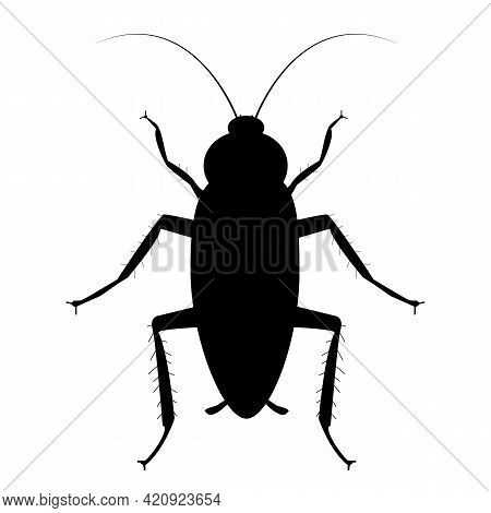 Cockroach Bug Icon On White Background. Cockroach Sign. Flat Style. Bug Spray And Insecticide Symbol