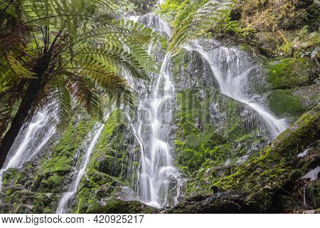 Bridal Veil Falls At End Of Walk Surrounded By New Zealand Native Bush Near Rotorua
