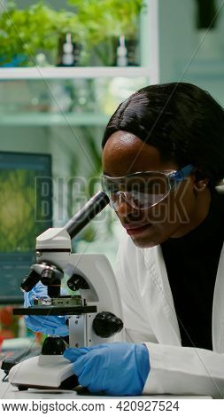 Slide View Of Biologist Researcher Analyzing Gmo Green Leaf Using Medical Microscope. Chemist Scient