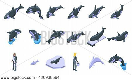 Killer Whale Icons Set. Isometric Set Of Killer Whale Vector Icons For Web Design Isolated On White