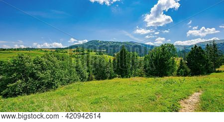 Countryside Summer Landscape On A Sunny Day. Grassy Fields And Forested Hills At The Foot Of Mountai
