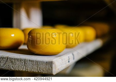 Cheese Production. Hard Cheeses. Italian Style Cheese Heads On Wooden Shelves. Defocused