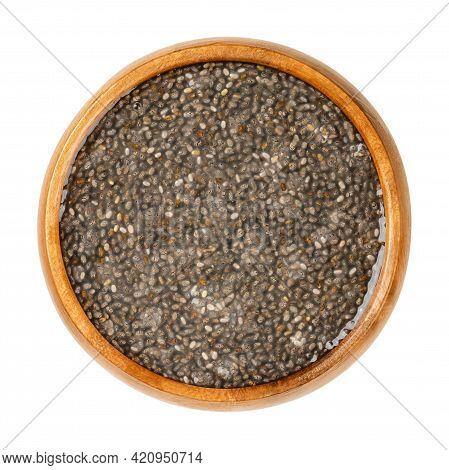 Raw Chia Seeds, Soaked In Water, In A Wooden Bowl. Fruits Of Salvia Hispanica, Very Hygroscopic, Abs