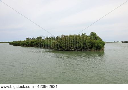 Small Islet With Vegetation On The Mouth Of The Great River Po Near The Adriatic Sea