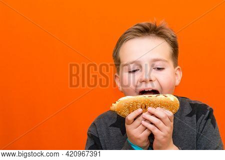 Handsome 10 Yers Old Boy Holding And Biting Hot Dog Indoors Carrot Studio Background Image.closeup,c