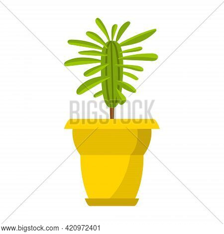 Houseplant, Milkweed In A Yellow Pot. Home Deciduous Plant. Vector Illustration In Flat Cartoon Styl