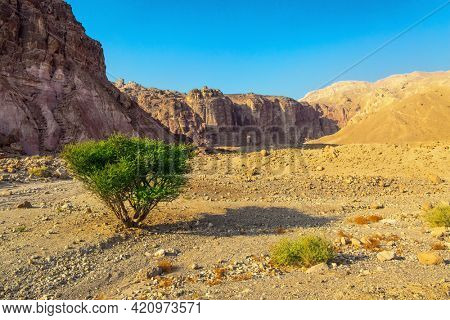 Eilat Mountains. The rocks are composed of sandstones, igneous and volcanic rocks. Multicolored landscape formations. Bizarre forms of weathered sandstone in the mountains of Eilat