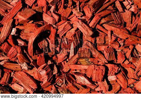 Close-up Top View Of Many Small Bright Red Wood Chips.