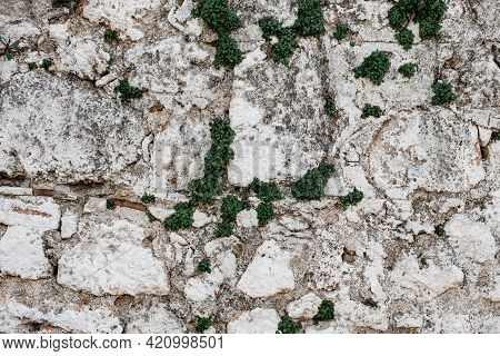 Close-up Texture Of Whitewashed Stone Wall With Scuffs And Irregularities