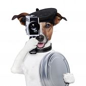 movie director dog with a vintage camera poster