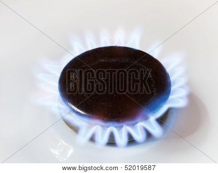 Gas In Range Burner Of Kitchen Stove