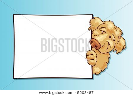 Shaggy Dog With White Card
