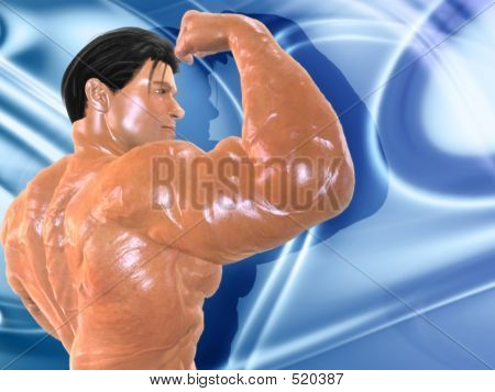 Body Building Bg003