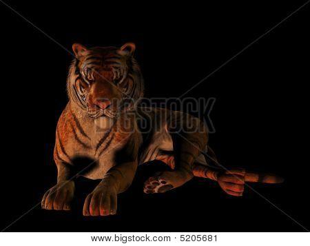 liegend Tiger isoliert auf schwarz.