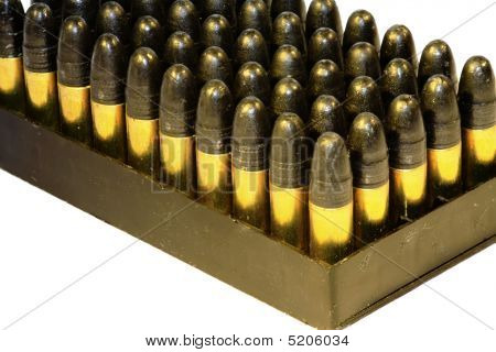 .22 Bullets In A Tray On White