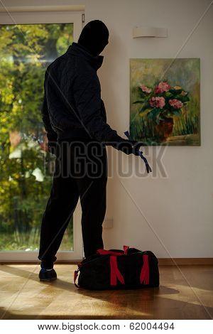 Standing Burglar In House