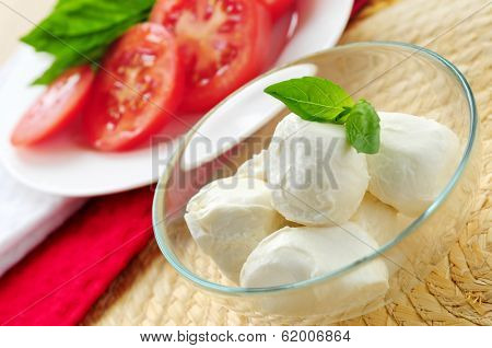 Bocconcini cheese, basil and sliced tomatoes - ingredients of traditional italian cuisine