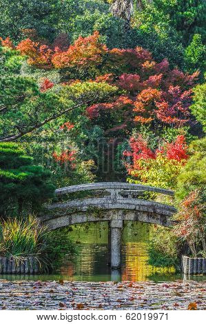 The Garden of Ryoanji Temple in Kyoto