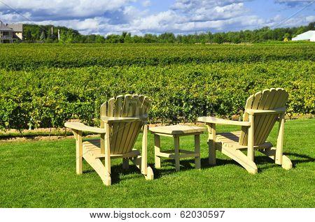 Muskoka chairs and table near vineyard at winery