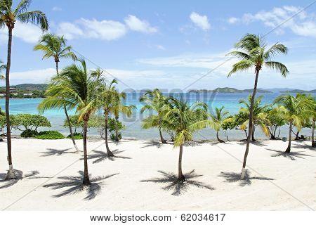 Tropical Beach, Caribbean