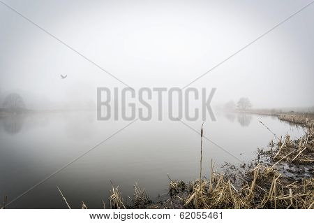 Foggy Lake Uk