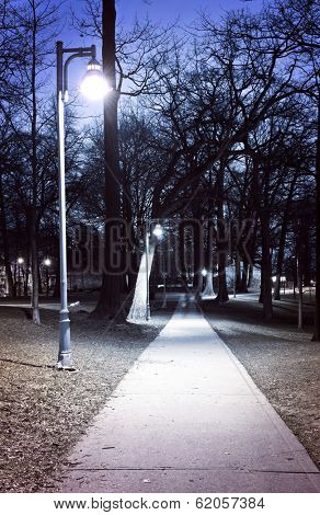 Path through city park at night with street lamps
