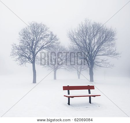 Foggy winter scene with leafless trees and red park bench