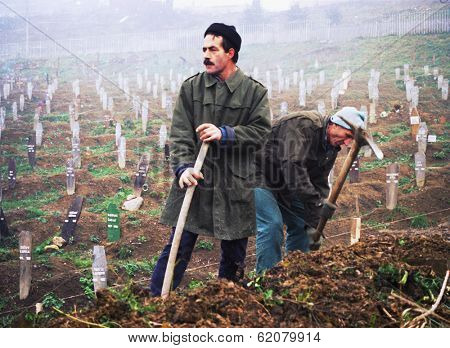 SARAJEVO, BOSNIA - DEC 24: Two gravediggers pick at the hard earth of the Lion Cemetery in Sarajevo, Bosnia, on Friday, December 24, 1993. The Bosnian capital has been under siege by Serb forces for one and a half years.