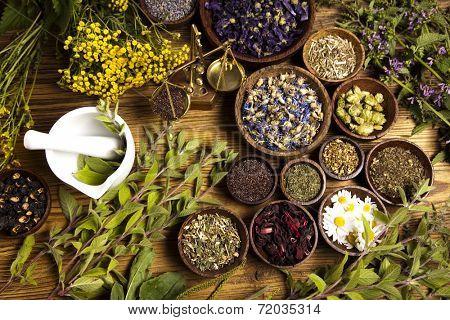 Natural medicine, herbs