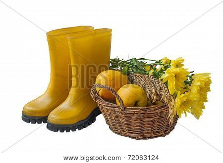 Basket With Apples, A Sheaf Of Wheat And Rubber Boots Isolated