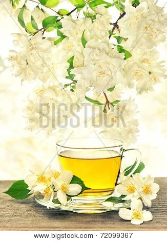Tea Cup With Jasmine Flowers