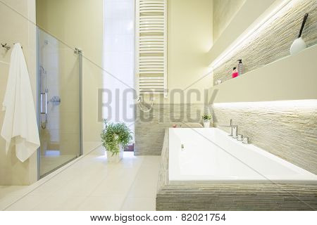 White Expensive Bathroom