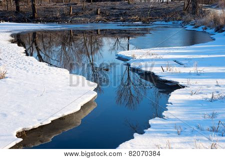 Winter Reflections During Thaw