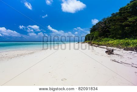 Beautiful Tropical White Sand Beach And Crystal Clear Water. Sipadan Island, Borneo, Malaysia.