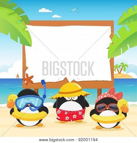Summer Penguins With Billboard