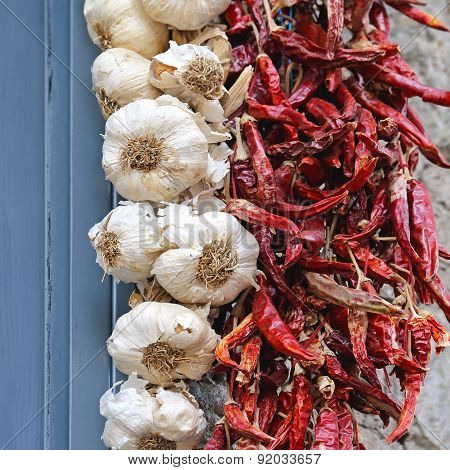 Dried Chili Pepper and Garlic Hanging at Wall poster