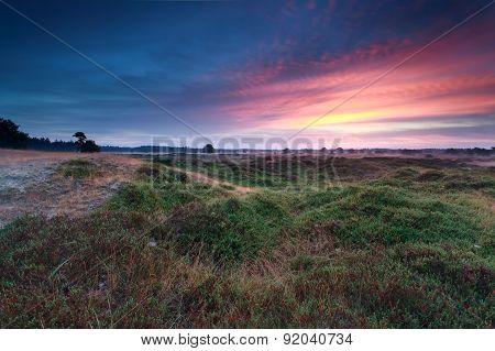 Summer Sunrise Over Green Hills