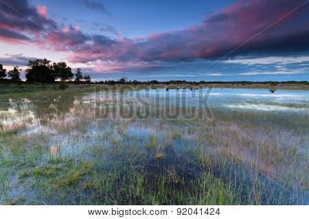 Sunset Over Wild Lake After Rain