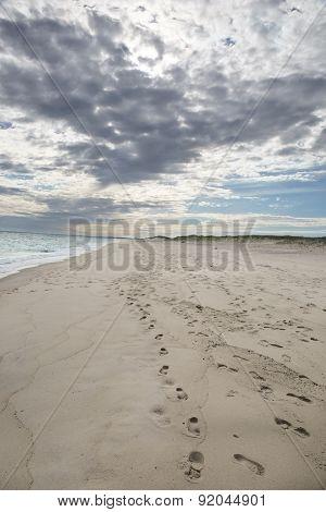 Beach on Martha's Vineyard, MA