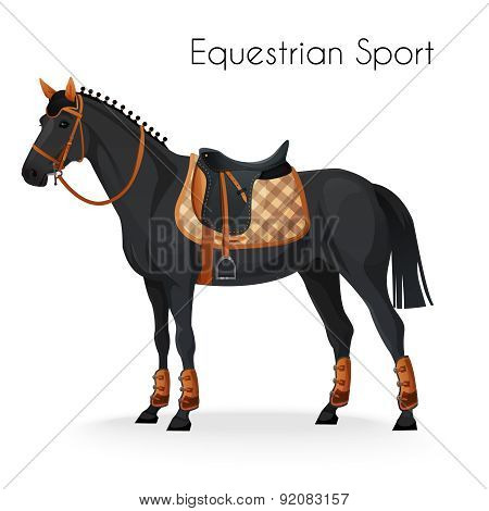 Horse with equestrian sport equipment